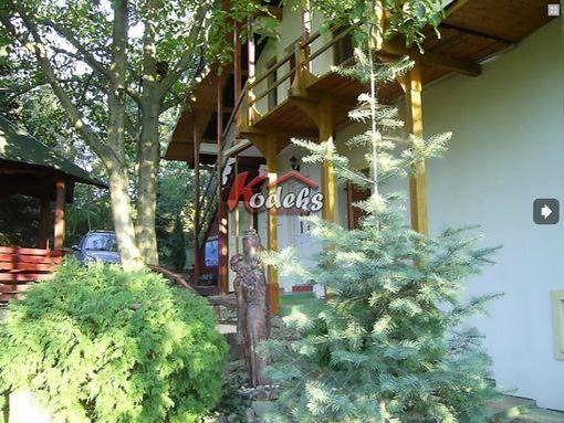 Vrdnik-Apartman u Radu - slika 3