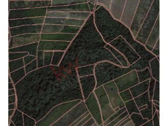 Odlično delimično građevinsko - delimično poljoprivredno zemljište pod šumom
