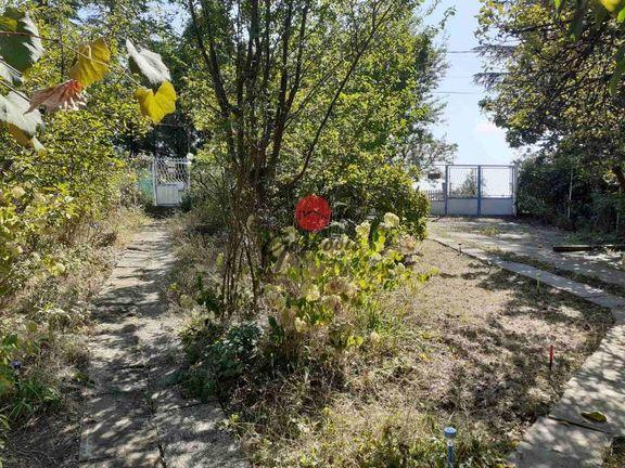 Plac u Velikoj Moštanici-Čukarica ID#1197