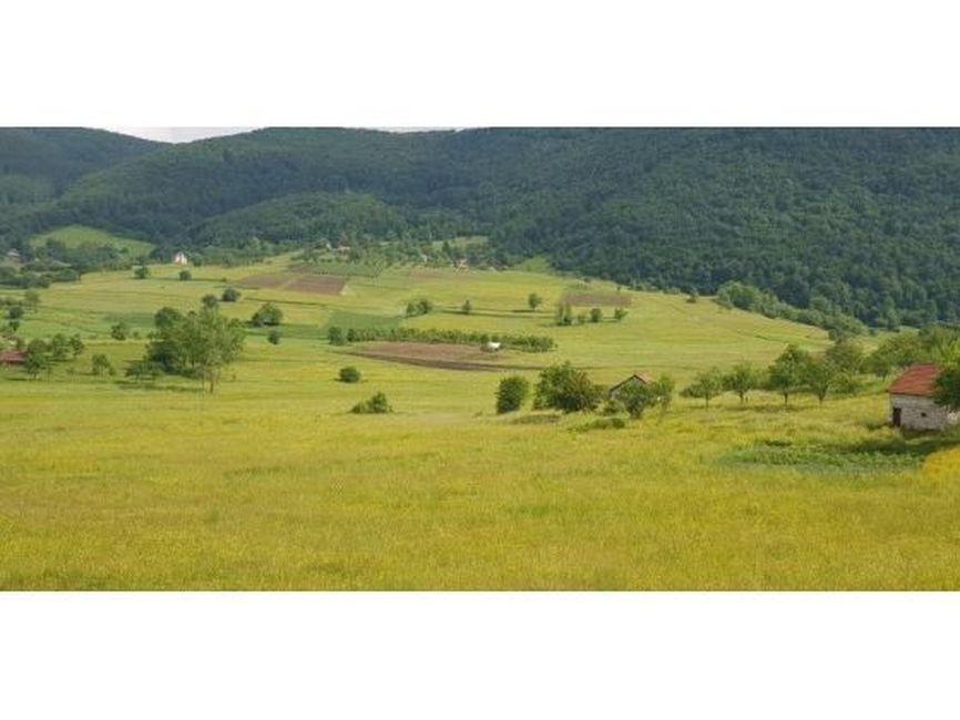 Prodaje se poljoprivreno zemljište,73,89 ara,Vraneša, Nova Varoš ID: 304-1