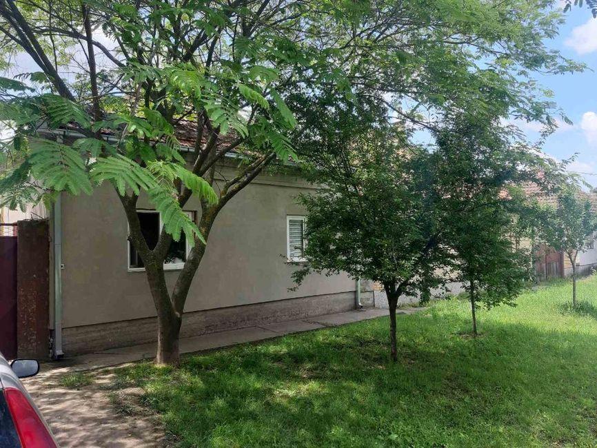 Etno kuća-Pančevo (Bavanište)
